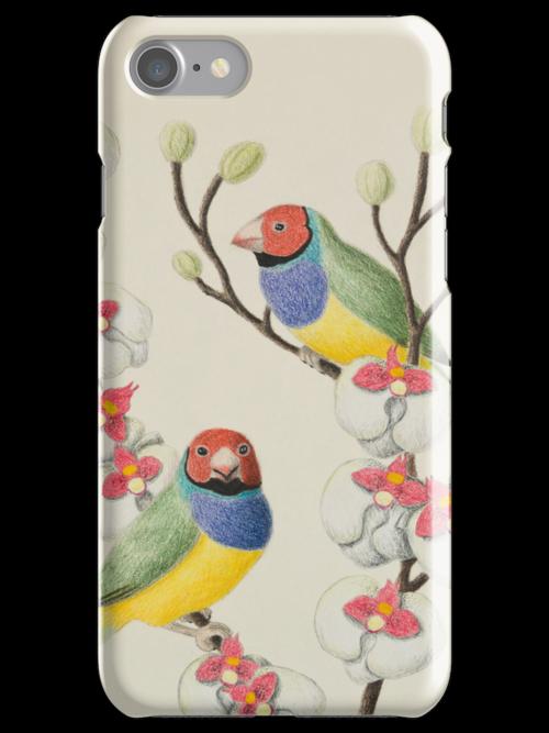 Gouldian Finch by jkartlife