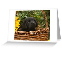 Something's in the air! Greeting Card