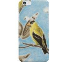Goldfinch On Seed Pod iPhone Case/Skin