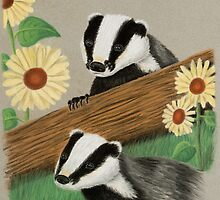 Badgers by jkartlife