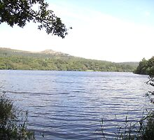 Burrator Reservoir by lezvee