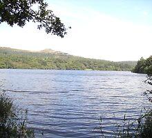 Burrator Reservoir by lezvee