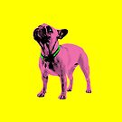 Pop Art Frenchie by Andrew Bret Wallis