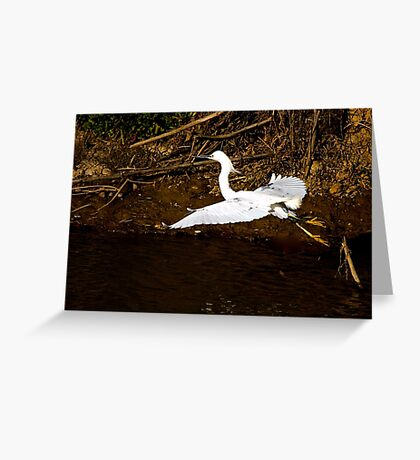 Gliding Along Greeting Card