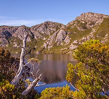 Crater Lake - Cradle Mountain National Park by Ron Finkel