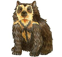 Spectacled Bear watercolour by Hannah-Hitchman