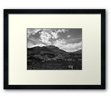 Olive Groves Framed Print