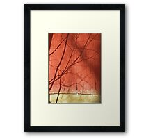 Barn Shadow Framed Print