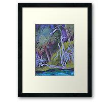Across the Springs 2 Framed Print