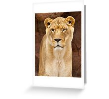 African Lion Dry Brush Greeting Card