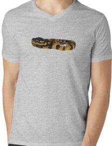 Ball Python Mens V-Neck T-Shirt