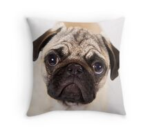 Pug Puppy Dry Brush Portrait Throw Pillow