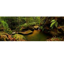 Blue Mountains, New South Wales. Photographic Print