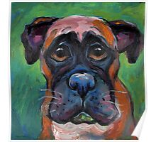 Cute Boxer dog puppy portrait painting by Svetlana Novikova Poster