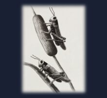 Grasshoppers on Cattails Kids Clothes