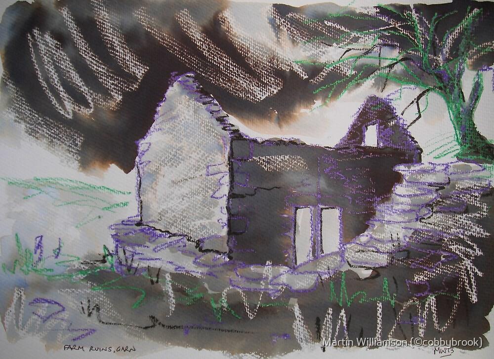 'Farm Ruins, Garn' by Martin Williamson (©cobbybrook)