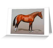Quantador, Hanoverian Stallion Greeting Card