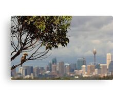 Kookaburra Skyline Canvas Print