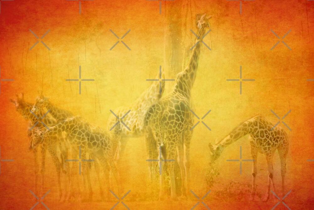 Serengeti Moods by Catherine Hamilton-Veal  ©