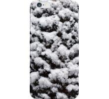 SnowFlower iPhone Case/Skin