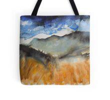 'The Splendour of Cadair Idris' Tote Bag