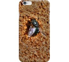 fly on the wall.  iPhone Case/Skin