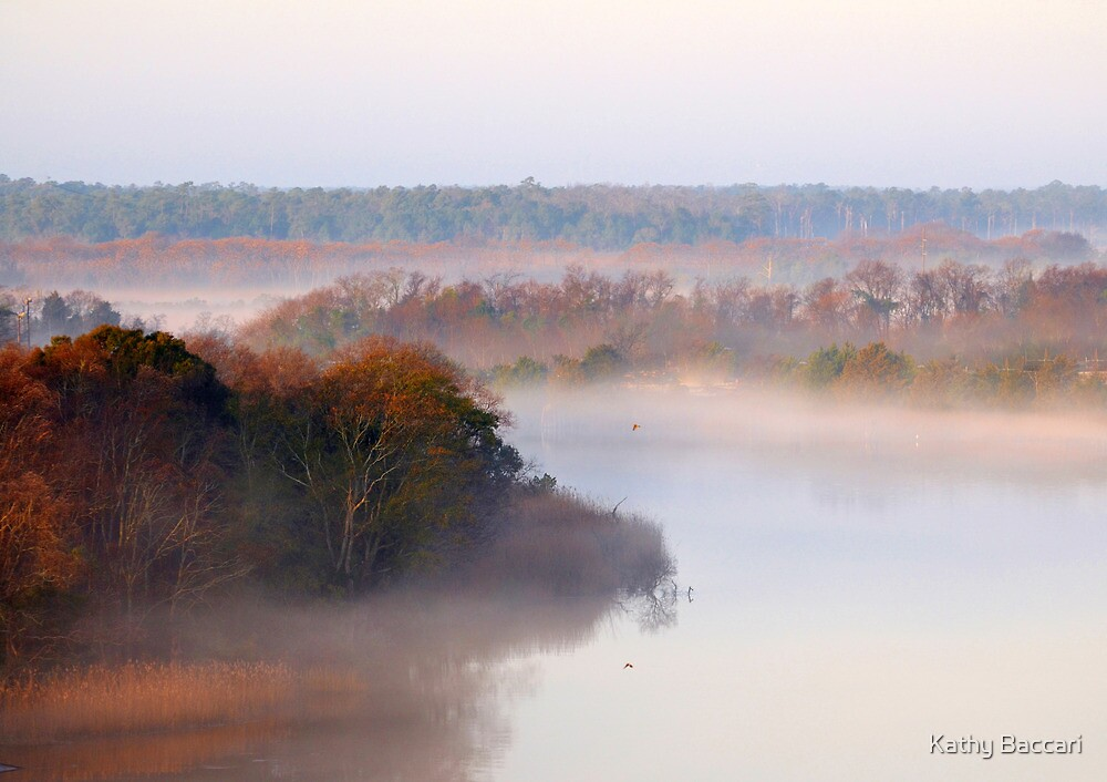 Foggy Morning In Georgetown by Kathy Baccari