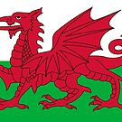 Flag of Wales by Mark Podger