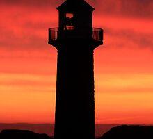 Morning Glory by Lynne69