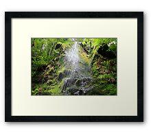 Mallyan Spout Waterfall Framed Print