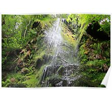 Mallyan Spout Waterfall Poster
