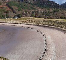Beach Curve by Jennifer J Watson