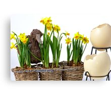 Easter eggs and daffodils Canvas Print