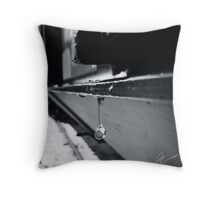 Winter thaw Throw Pillow