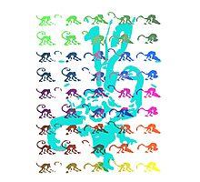 12 Monkeys - Rainbow Photographic Print
