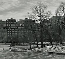 Winter in Boston Public Garden  by dantejr