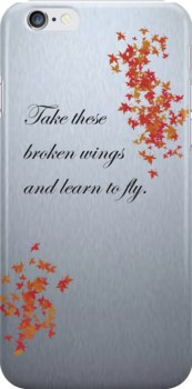 Take these broken wings and learn to fly. by aussiecandice