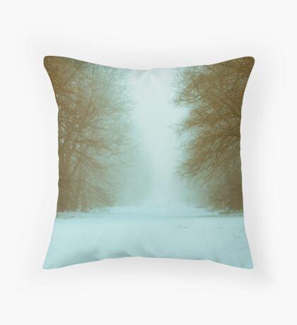 Nowton Park,Winter,Bury St Edmunds,Suffolk,UK Throw Pillow