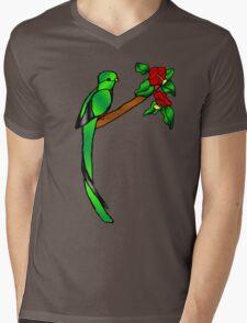 Quetzal Mens V-Neck T-Shirt