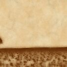 Brown Prairie by Anthony Ross
