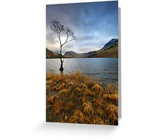 Lone Tree at Buttermere Greeting Card
