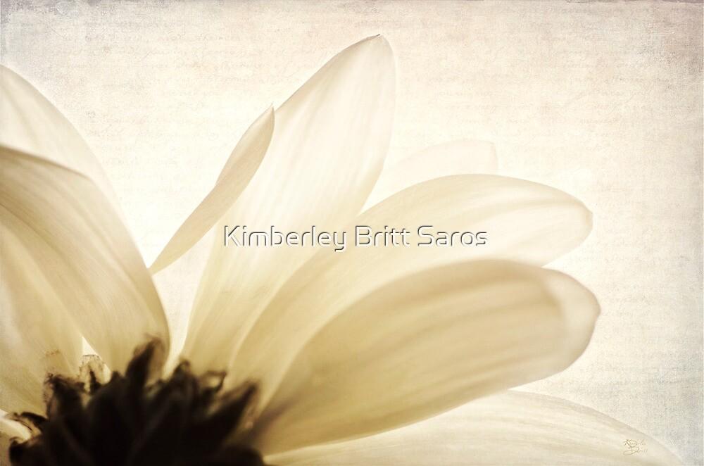 Translucent  by KBritt