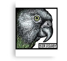 """Sir Digby, 2014"" Canvas Print"