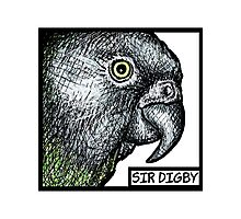 """Sir Digby, 2014"" Photographic Print"