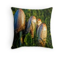 admiring the last rays Throw Pillow