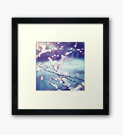 Flash Framed Print