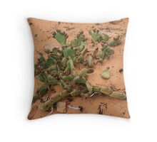 Cactus,Kodachrome State Park,Utah USA Throw Pillow