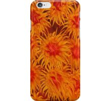 orange coral -iphone case iPhone Case/Skin