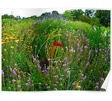Garden fishbowl Poster