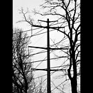 Transmission Tower Behind Nikola Tesla's Wardenclyffe Laboratory - Shoreham, New York by © Sophie Smith